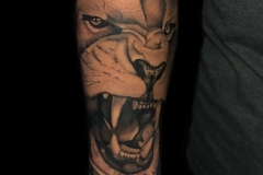 Realistic Lion Tattoo Black and Grey